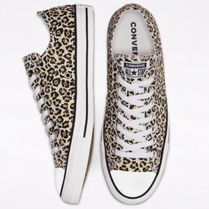 NEW Low Top Converse